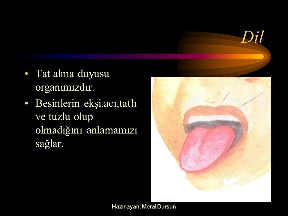 Hazırlayan: Meral Dursun Dil Tat alma duyusu organımızdır.