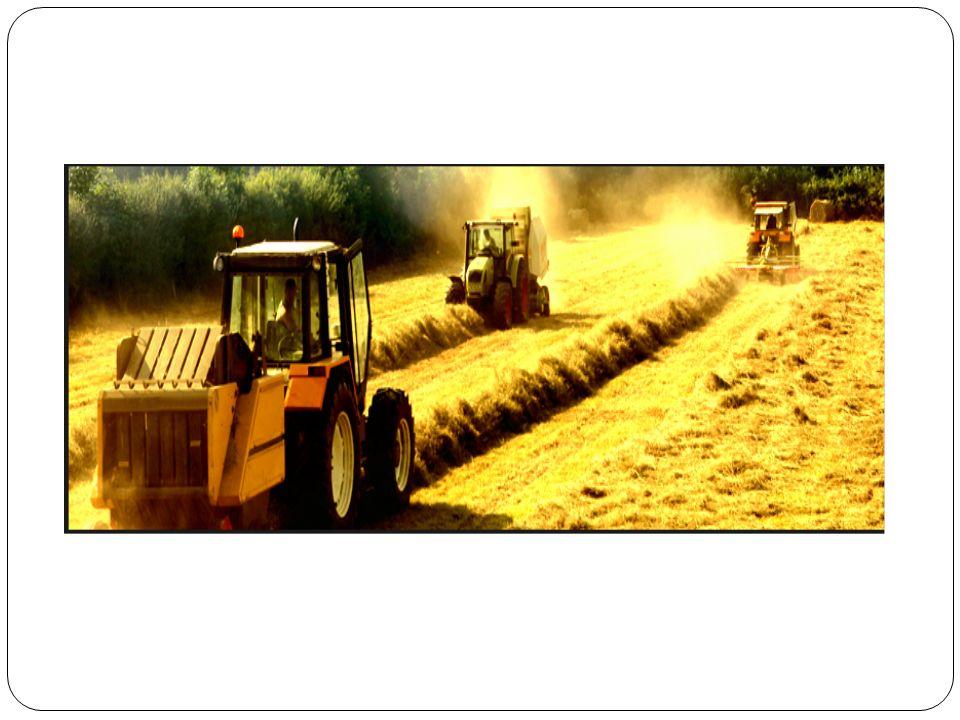Organik Bitkisel Üretim Organik tarım fikri ilk önce bitkisel ürünlerle başlamış ve çalışılmış daha sonra diğer alanlarda uygulanmıştır.