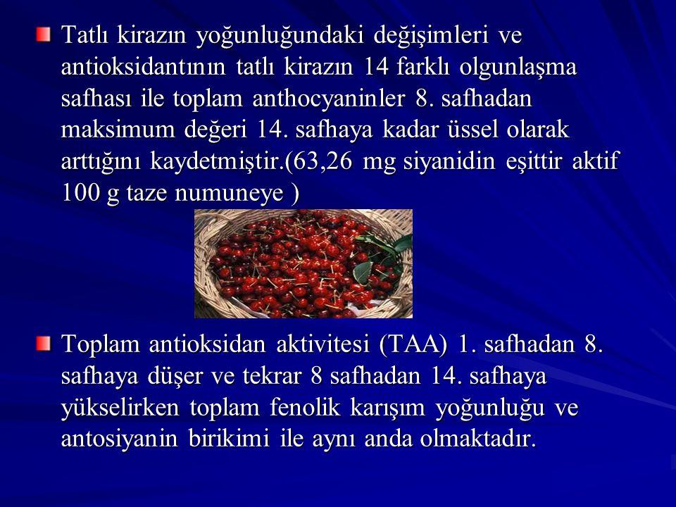 Tatlı kirazın yoğunluğundaki değişimleri ve antioksidantının tatlı kirazın 14 farklı olgunlaşma safhası ile toplam anthocyaninler 8. safhadan maksimum