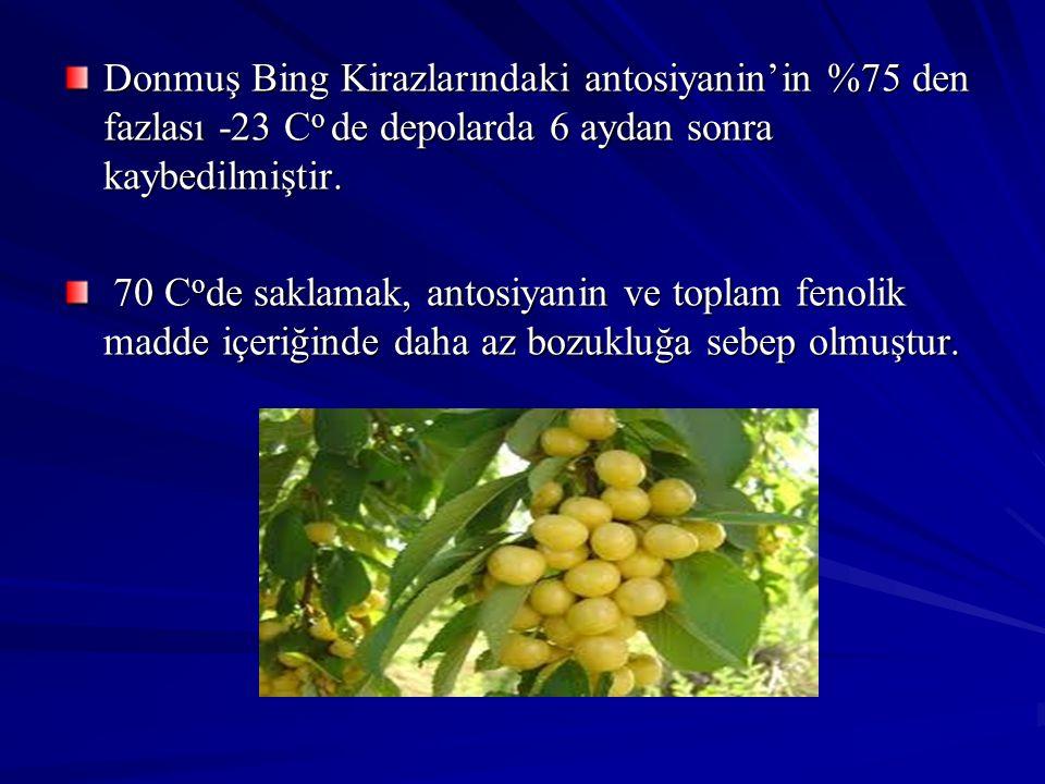 Donmuş Bing Kirazlarındaki antosiyanin'in %75 den fazlası -23 C o de depolarda 6 aydan sonra kaybedilmiştir. 70 C o de saklamak, antosiyanin ve toplam