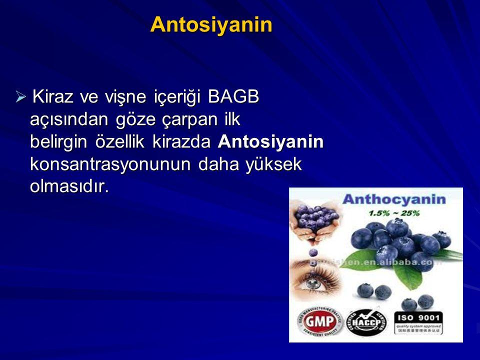 Antosiyanin Antosiyanin  Kiraz ve vişne içeriği BAGB açısından göze çarpan ilk açısından göze çarpan ilk belirgin özellik kirazda Antosiyanin belirgi