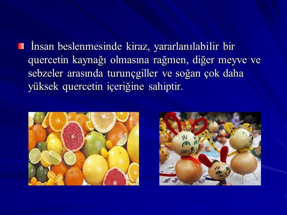 İnsan beslenmesinde kiraz, yararlanılabilir bir quercetin kaynağı olmasına rağmen, diğer meyve ve sebzeler arasında turunçgiller ve soğan çok daha yük