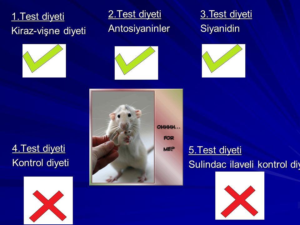 1.Test diyeti Kiraz-vişne diyeti 2.Test diyeti Antosiyaninler 4.Test diyeti Kontrol diyeti 5.Test diyeti Sulindac ilaveli kontrol diyeti 3.Test diyeti