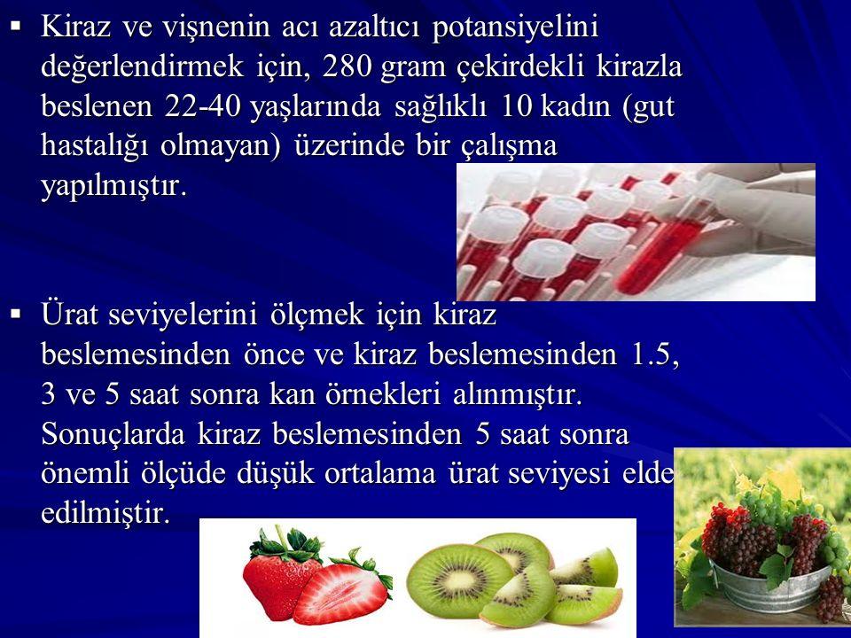  Kiraz ve vişnenin acı azaltıcı potansiyelini değerlendirmek için, 280 gram çekirdekli kirazla beslenen 22-40 yaşlarında sağlıklı 10 kadın (gut hasta