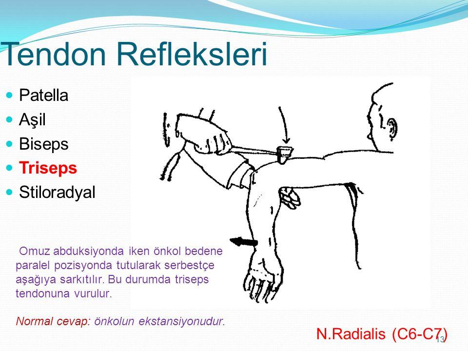 13 Tendon Refleksleri Patella Aşil Biseps Triseps Stiloradyal N.Radialis (C6-C7) Omuz abduksiyonda iken önkol bedene paralel pozisyonda tutularak serb