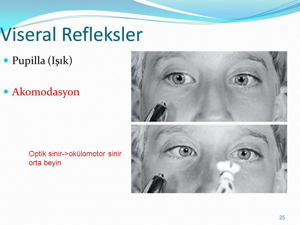 25 Viseral Refleksler Pupilla (Işık) Akomodasyon Optik sinir->okülomotor sinir orta beyin