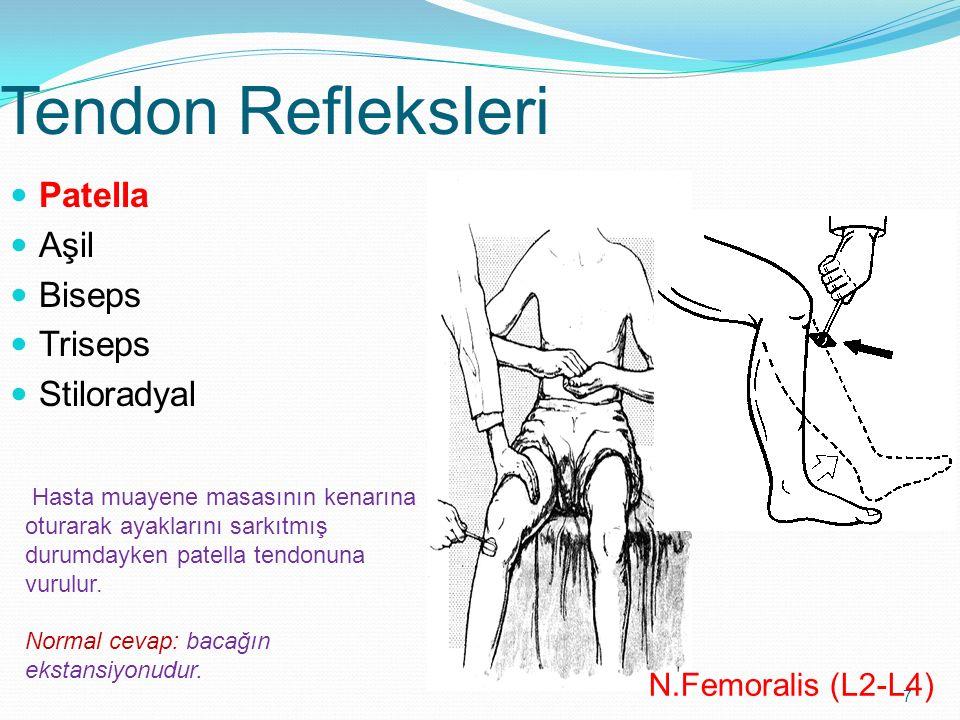 7 Tendon Refleksleri Patella Aşil Biseps Triseps Stiloradyal N.Femoralis (L2-L4) Hasta muayene masasının kenarına oturarak ayaklarını sarkıtmış durumd