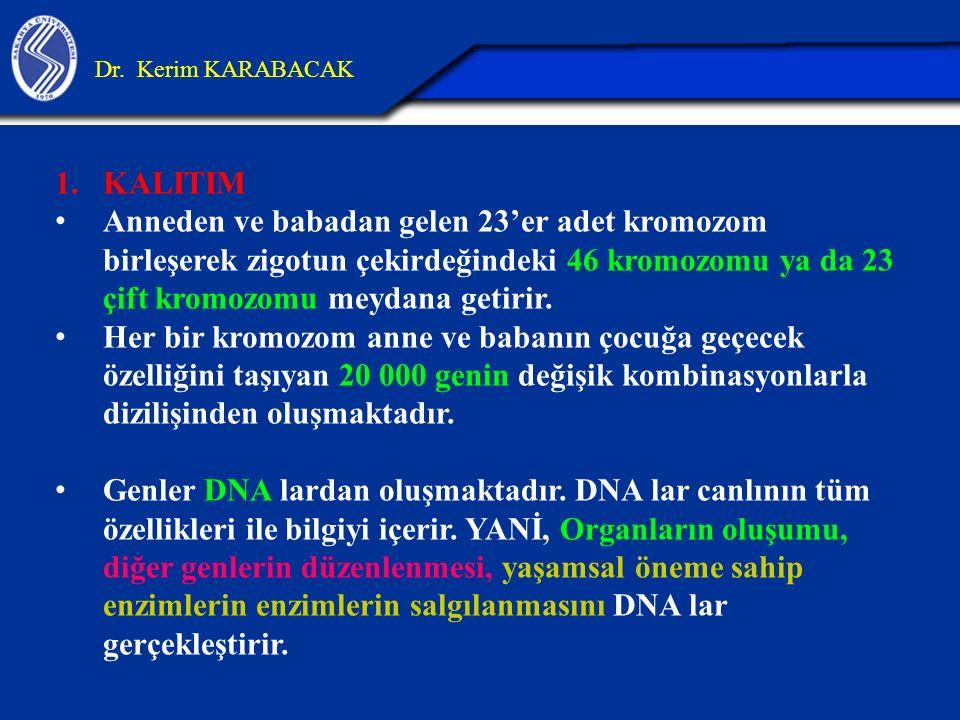 1.KALITIM Anneden ve babadan gelen 23'er adet kromozom birleşerek zigotun çekirdeğindeki 46 kromozomu ya da 23 çift kromozomu meydana getirir. Her bir