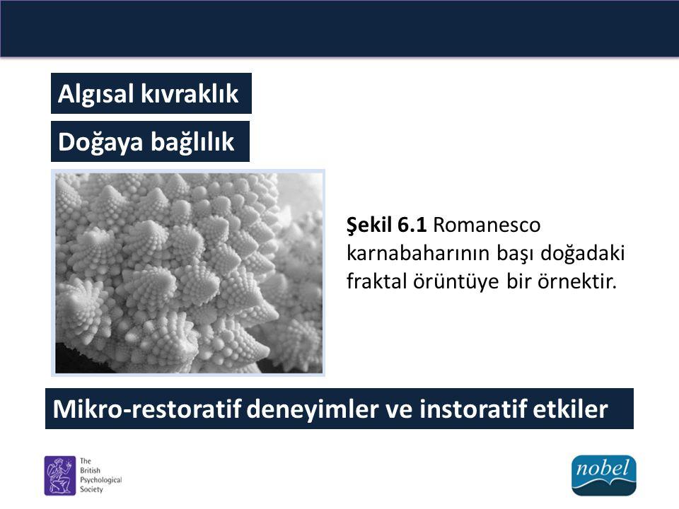Algısal kıvraklık Doğaya bağlılık Şekil 6.1 Romanesco karnabaharının başı doğadaki fraktal örüntüye bir örnektir. Mikro-restoratif deneyimler ve insto
