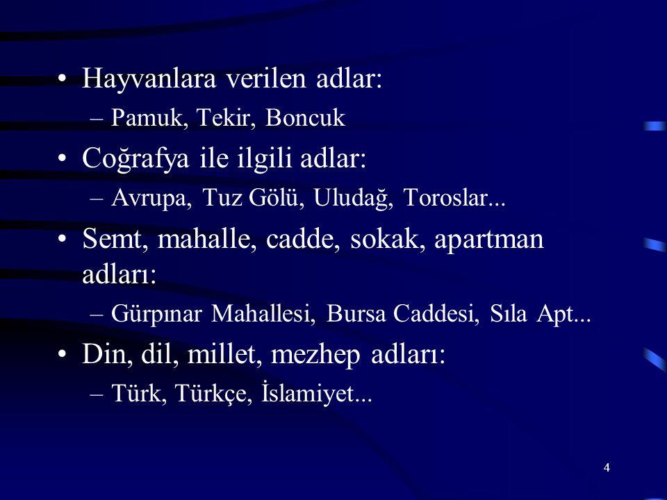 5 Kitap, dergi, gazete, yapı ve yapıt adları: –Çalıkuşu, Genç Kalemler, Ankara Kalesi, Milliyet...