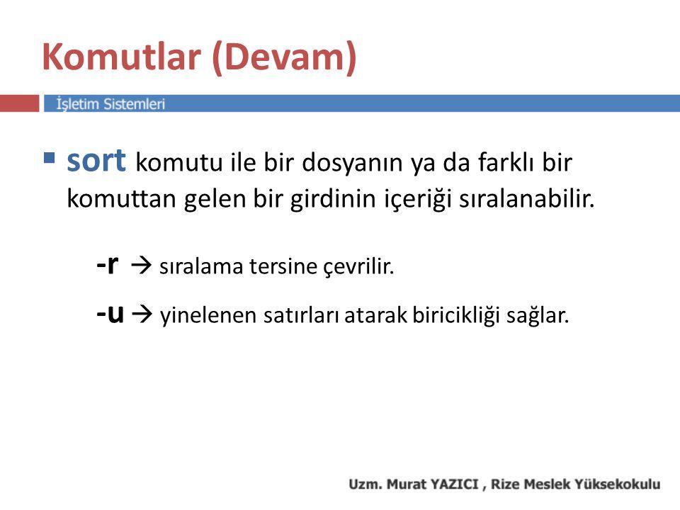 Komutlar (Devam)  ps komutu Sistem yöneticisinin sıklıkla kullandığı en önemli komutlardan bir tanesidir.
