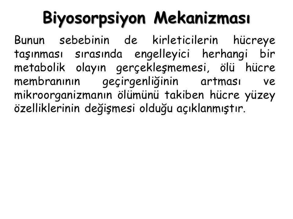 Biyosorpsiyon Mekanizması Bunun sebebinin de kirleticilerin hücreye taşınması sırasında engelleyici herhangi bir metabolik olayın gerçekleşmemesi, ölü
