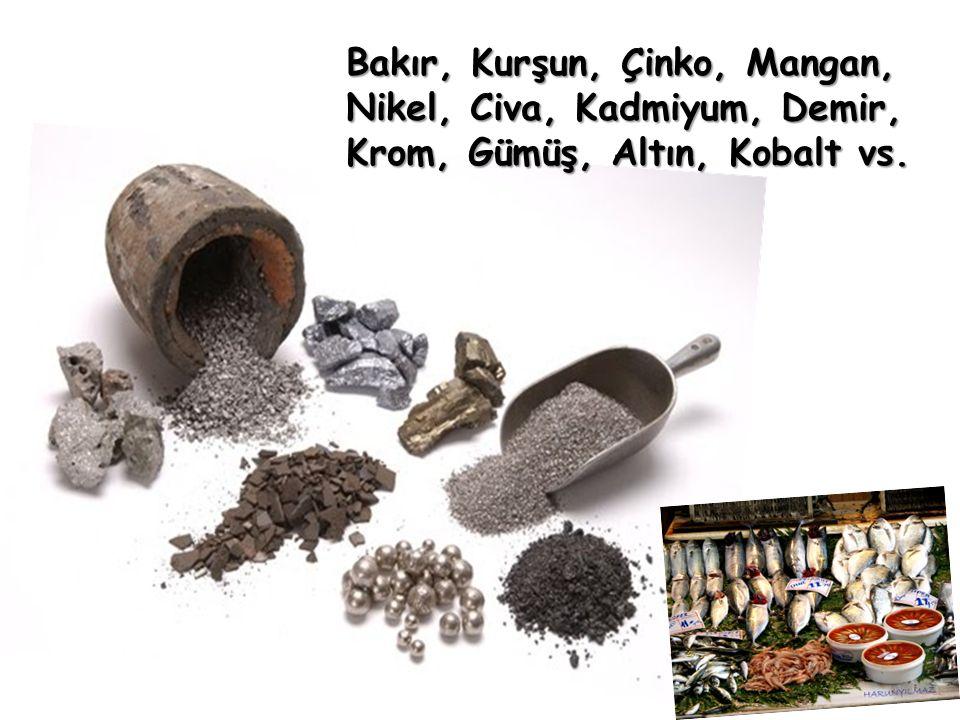 Bakır, Kurşun, Çinko, Mangan, Nikel, Civa, Kadmiyum, Demir, Krom, Gümüş, Altın, Kobalt vs.
