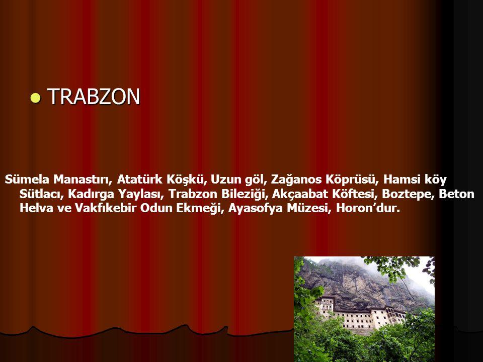 TRABZON TRABZON Sümela Manastırı, Atatürk Köşkü, Uzun göl, Zağanos Köprüsü, Hamsi köy Sütlacı, Kadırga Yaylası, Trabzon Bileziği, Akçaabat Köftesi, Bo
