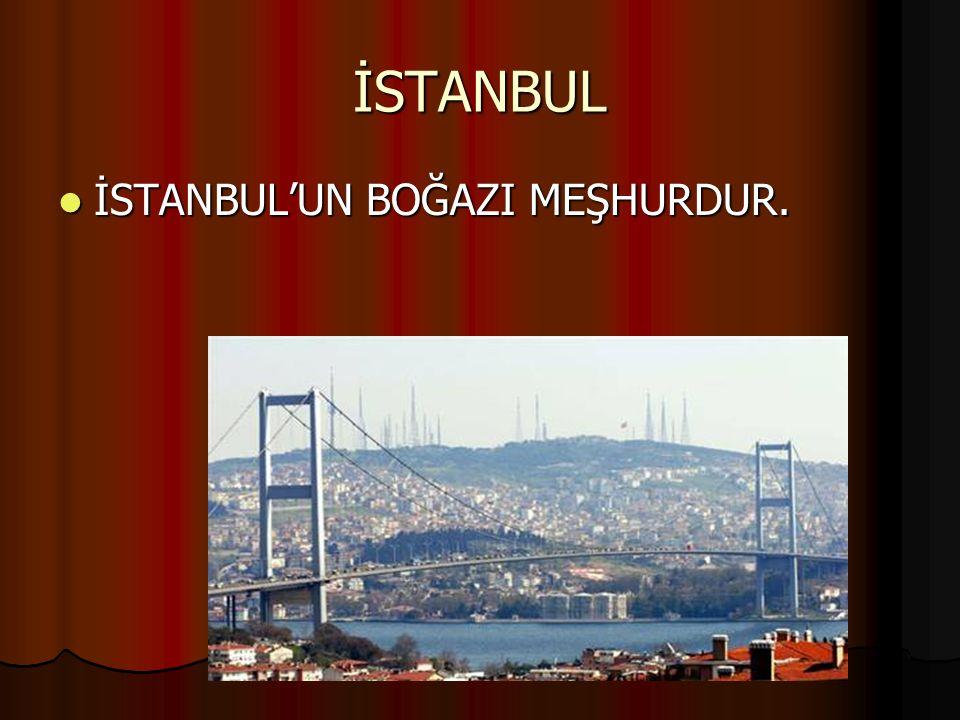 İSTANBUL İSTANBUL'UN BOĞAZI MEŞHURDUR. İSTANBUL'UN BOĞAZI MEŞHURDUR.