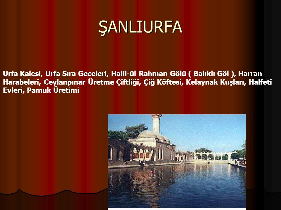 ŞANLIURFA Urfa Kalesi, Urfa Sıra Geceleri, Halil-ül Rahman Gölü ( Balıklı Göl ), Harran Harabeleri, Ceylanpınar Üretme Çiftliği, Çiğ Köftesi, Kelaynak