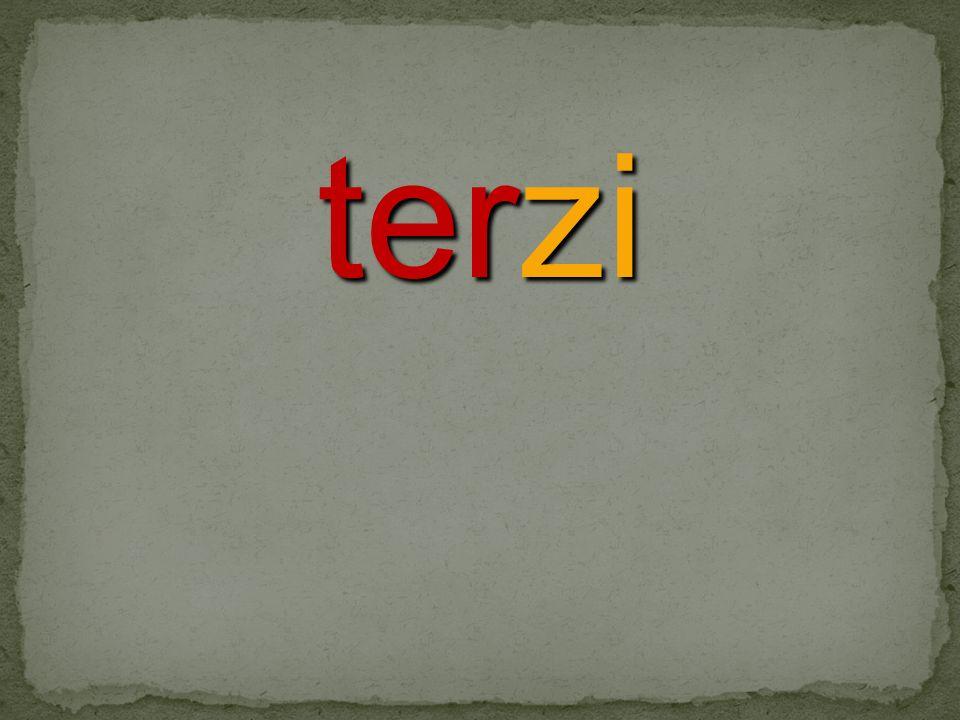 terzi