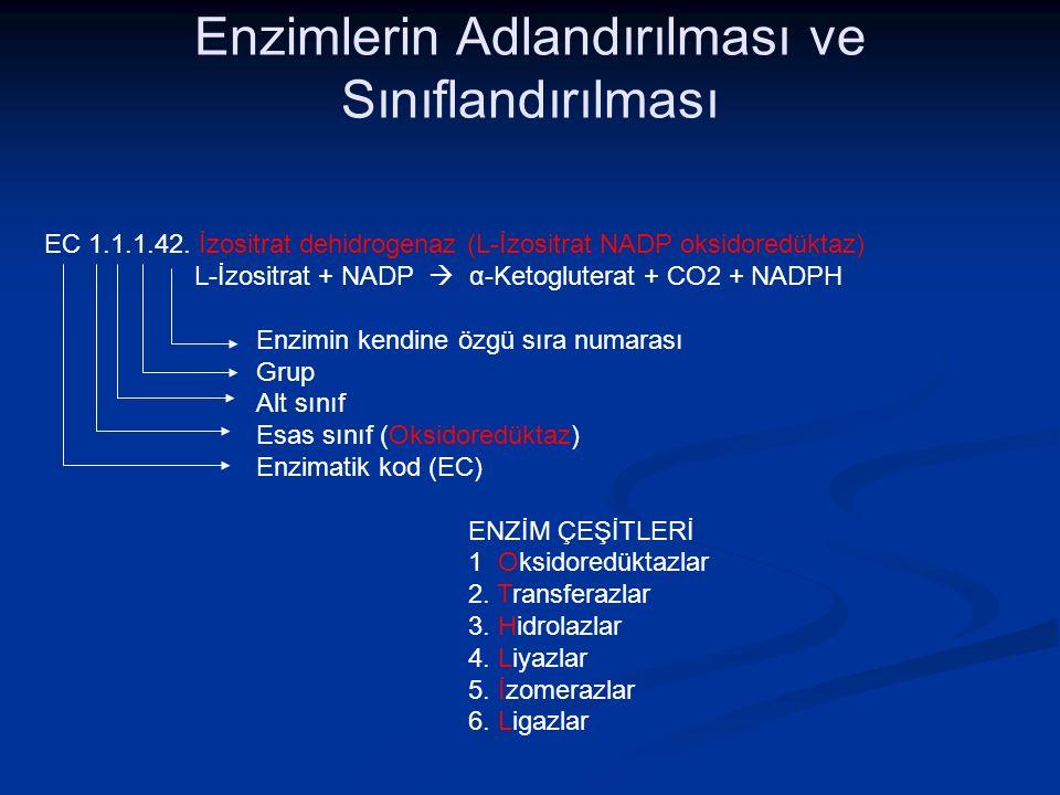 EC 1.1.1.42. İzositrat dehidrogenaz (L-İzositrat NADP oksidoredüktaz) L-İzositrat + NADP  α-Ketogluterat + CO2 + NADPH Enzimin kendine özgü sıra numa