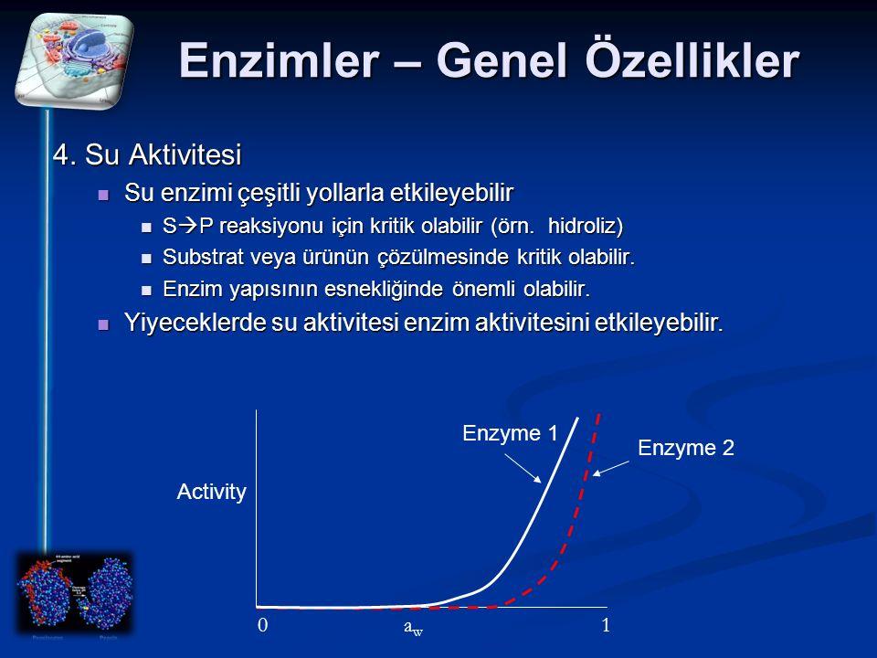 Enzimler – Genel Özellikler 4. Su Aktivitesi Su enzimi çeşitli yollarla etkileyebilir Su enzimi çeşitli yollarla etkileyebilir S  P reaksiyonu için k