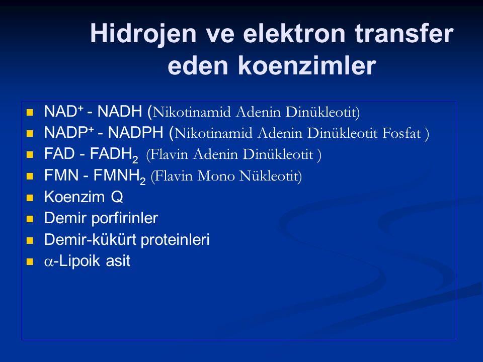 NAD + - NADH ( Nikotinamid Adenin Dinükleotit) NADP + - NADPH ( Nikotinamid Adenin Dinükleotit Fosfat ) FAD - FADH 2 (Flavin Adenin Dinükleotit ) FMN