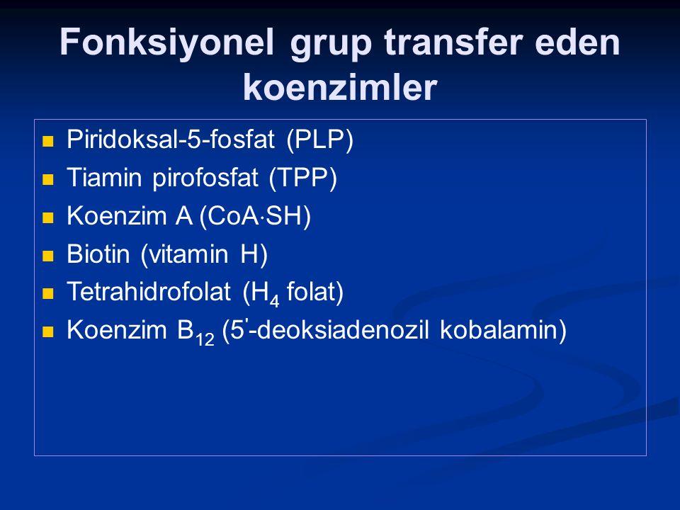 Fonksiyonel grup transfer eden koenzimler Piridoksal-5-fosfat (PLP) Tiamin pirofosfat (TPP) Koenzim A (CoA  SH) Biotin (vitamin H) Tetrahidrofolat (H
