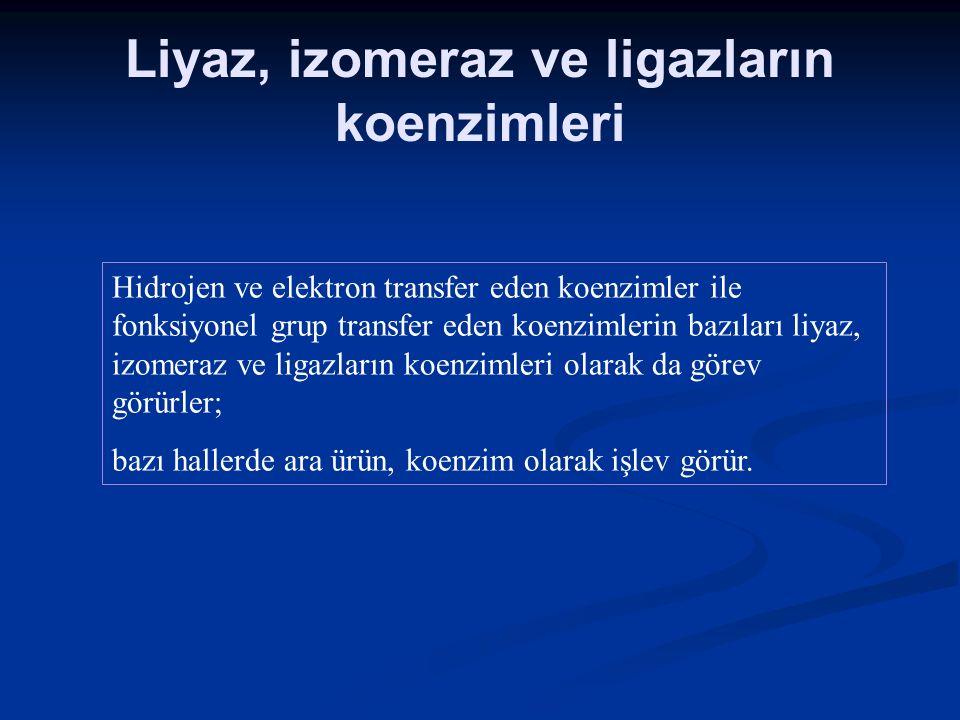 Liyaz, izomeraz ve ligazların koenzimleri Hidrojen ve elektron transfer eden koenzimler ile fonksiyonel grup transfer eden koenzimlerin bazıları liyaz