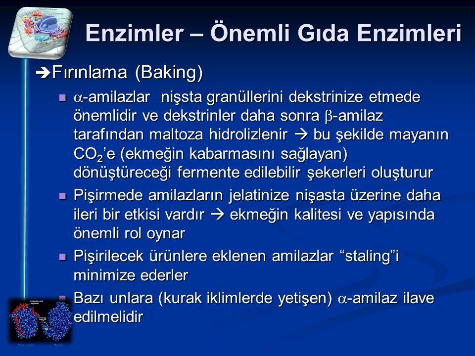 Enzimler – Önemli Gıda Enzimleri  Fırınlama (Baking)  -amilazlar nişsta granüllerini dekstrinize etmede önemlidir ve dekstrinler daha sonra  -amila