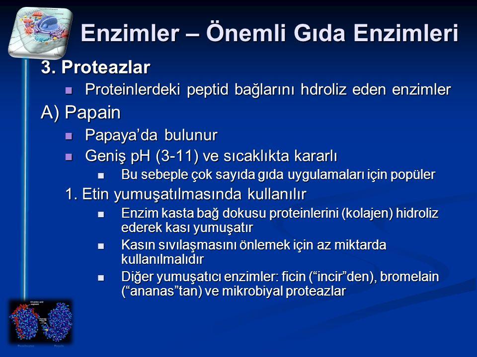 Enzimler – Önemli Gıda Enzimleri 3. Proteazlar Proteinlerdeki peptid bağlarını hdroliz eden enzimler Proteinlerdeki peptid bağlarını hdroliz eden enzi