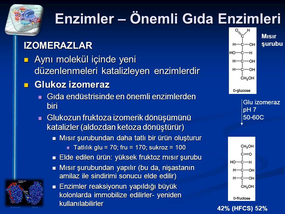 Enzimler – Önemli Gıda Enzimleri IZOMERAZLAR Aynı molekül içinde yeni düzenlenmeleri katalizleyen enzimlerdir Aynı molekül içinde yeni düzenlenmeleri