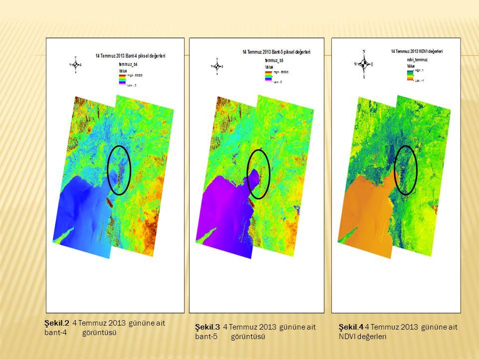 Şekil.2 4 Temmuz 2013 gününe ait bant-4 görüntüsü Şekil.3 4 Temmuz 2013 gününe ait bant-5 görüntüsü Şekil.4 4 Temmuz 2013 gününe ait NDVI değerleri