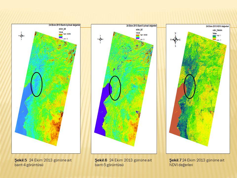 Şekil.5 24 Ekim 2013 gününe ait bant-4 görüntüsü Şekil.6 24 Ekim 2013 gününe ait bant-5 görüntüsü Şekil.7 24 Ekim 2013 gününe ait NDVI değerleri