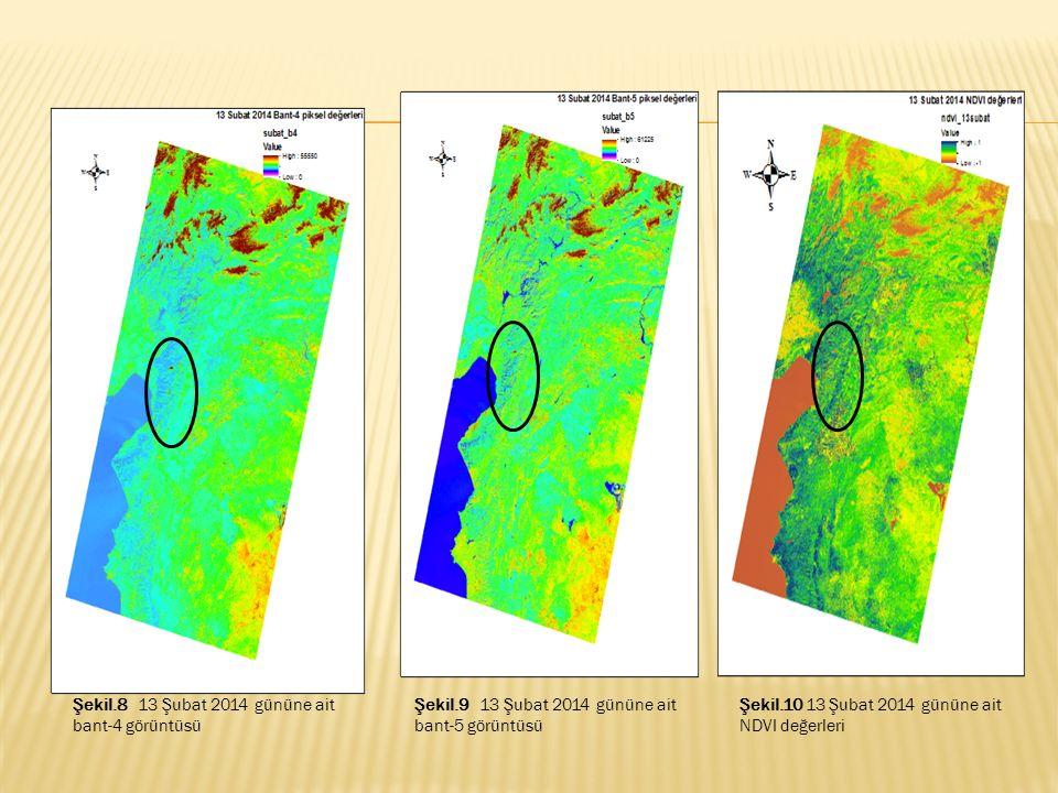 Şekil.8 13 Şubat 2014 gününe ait bant-4 görüntüsü Şekil.9 13 Şubat 2014 gününe ait bant-5 görüntüsü Şekil.10 13 Şubat 2014 gününe ait NDVI değerleri