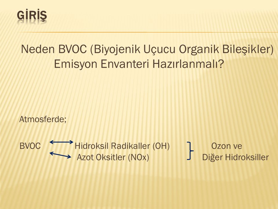 BVOC Emisyon Envanteri: BVOC'lerin Emisyon miktarlarının mevsimlere göre değişimi Bitkilerin yaprak yoğunluklarının mevsimlere göre değişimi BVOC: -isopren (Işık ve Sıcaklığa Bağlı) -monoterpenler (Sadece Sıcaklığa Bağlı) (Işık ve Sıcaklığa Bağlı)