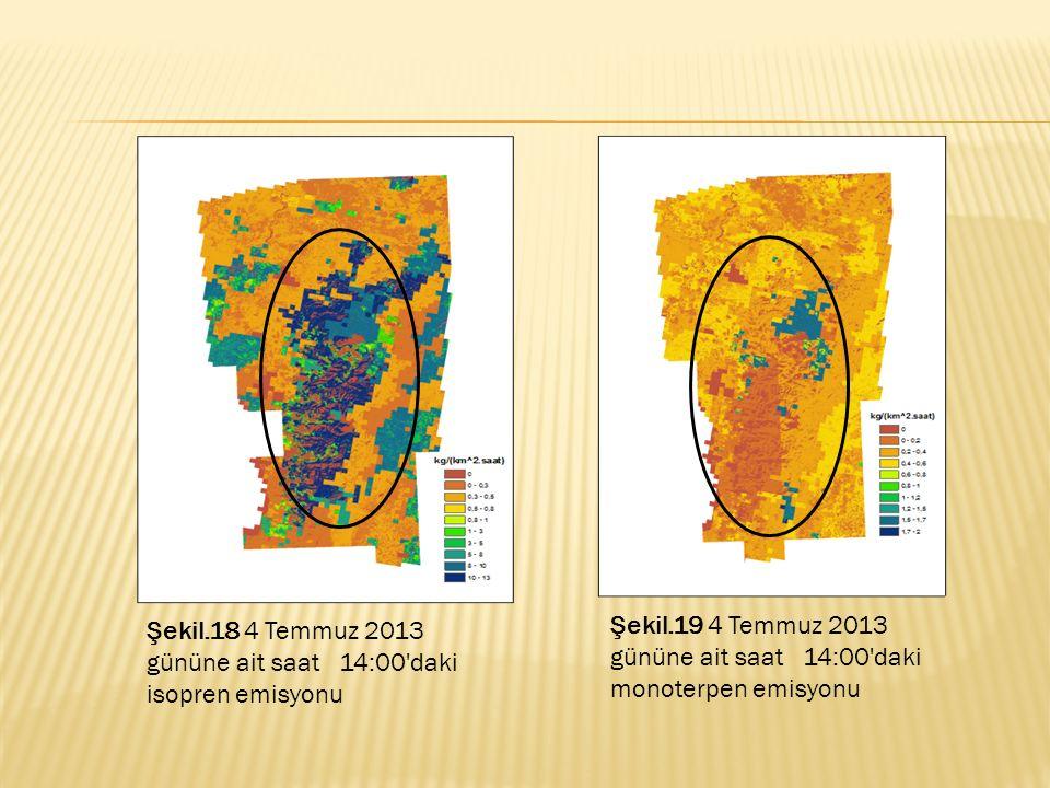 Şekil.18 4 Temmuz 2013 gününe ait saat 14:00'daki isopren emisyonu Şekil.19 4 Temmuz 2013 gününe ait saat 14:00'daki monoterpen emisyonu