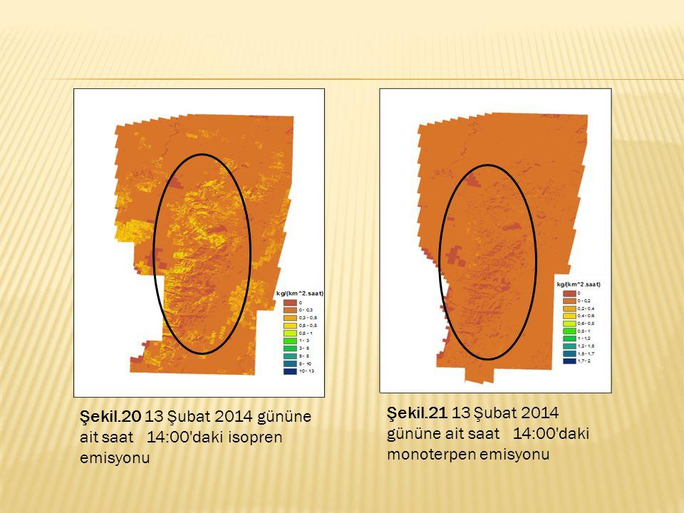 Şekil.20 13 Şubat 2014 gününe ait saat 14:00'daki isopren emisyonu Şekil.21 13 Şubat 2014 gününe ait saat 14:00'daki monoterpen emisyonu
