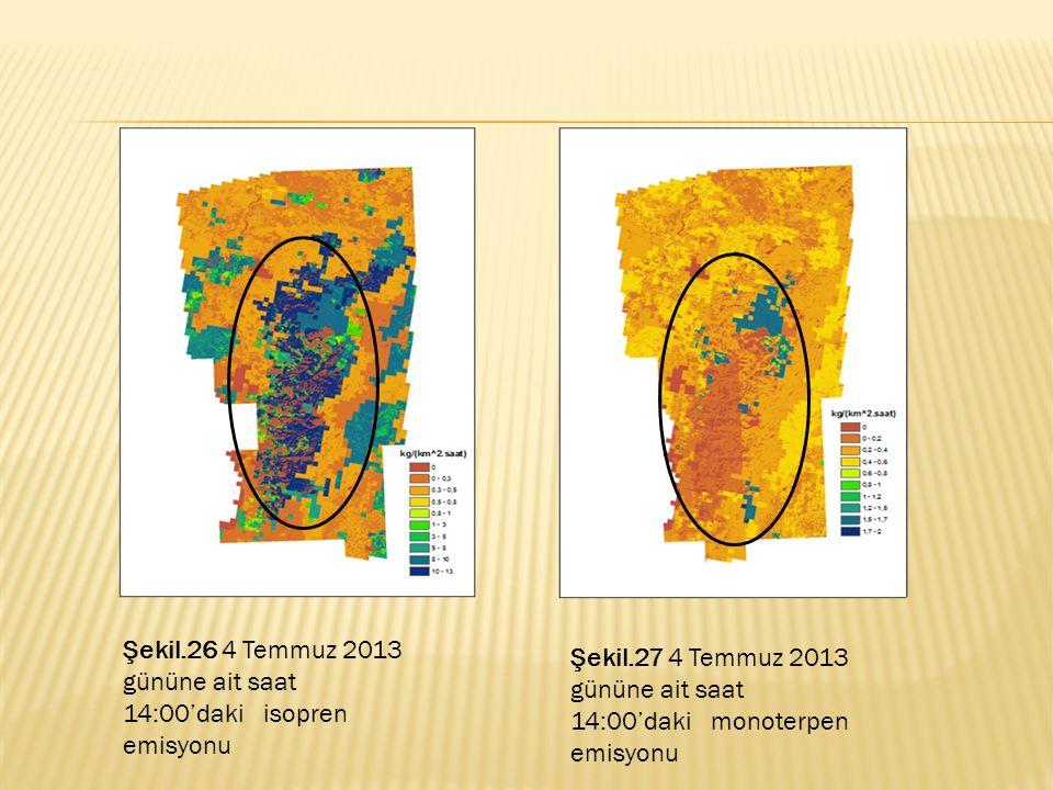 Şekil.26 4 Temmuz 2013 gününe ait saat 14:00'daki isopren emisyonu Şekil.27 4 Temmuz 2013 gününe ait saat 14:00'daki monoterpen emisyonu