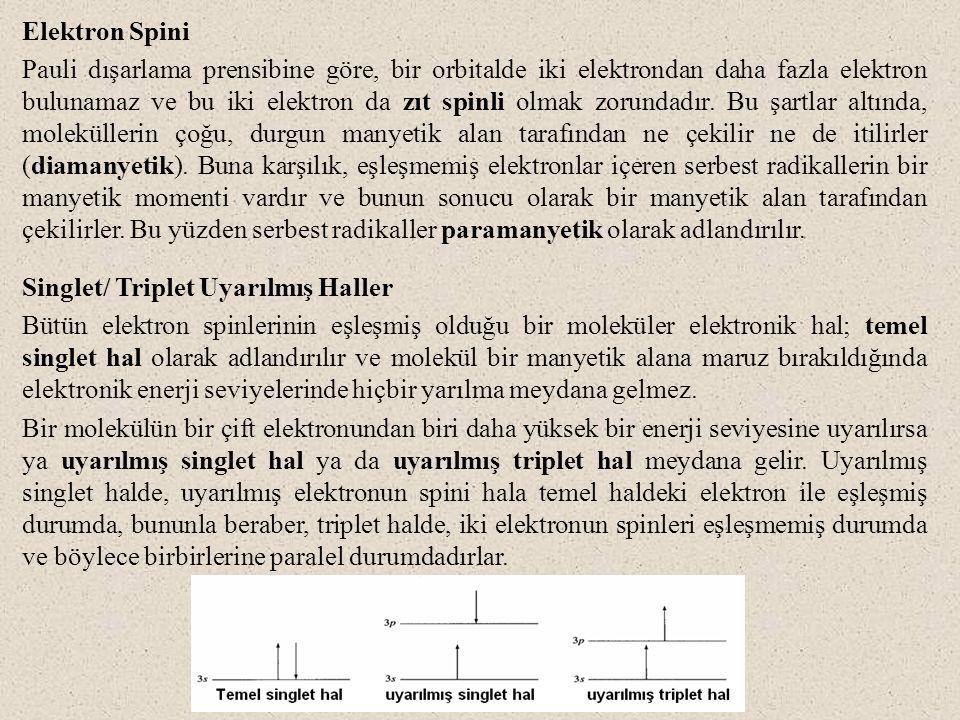 Elektron Spini Pauli dışarlama prensibine göre, bir orbitalde iki elektrondan daha fazla elektron bulunamaz ve bu iki elektron da zıt spinli olmak zor