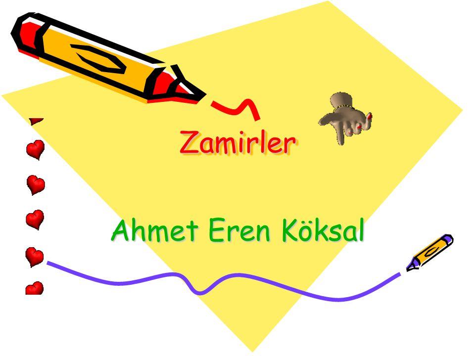 Ahmet Eren Köksal ZamirlerZamirler