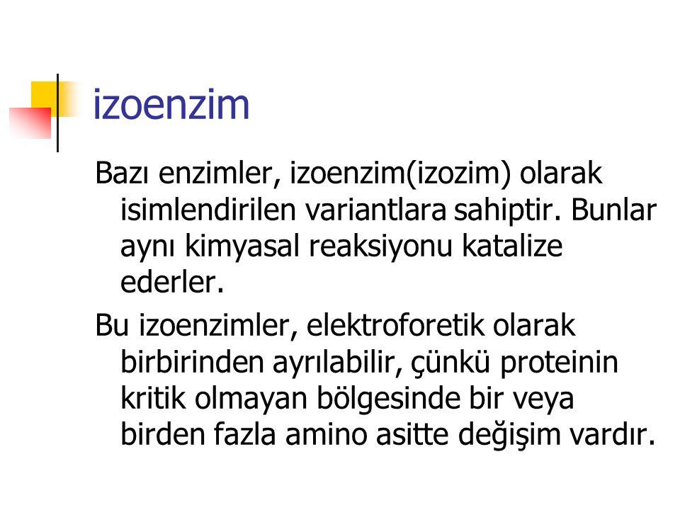 izoenzim Bazı enzimler, izoenzim(izozim) olarak isimlendirilen variantlara sahiptir. Bunlar aynı kimyasal reaksiyonu katalize ederler. Bu izoenzimler,
