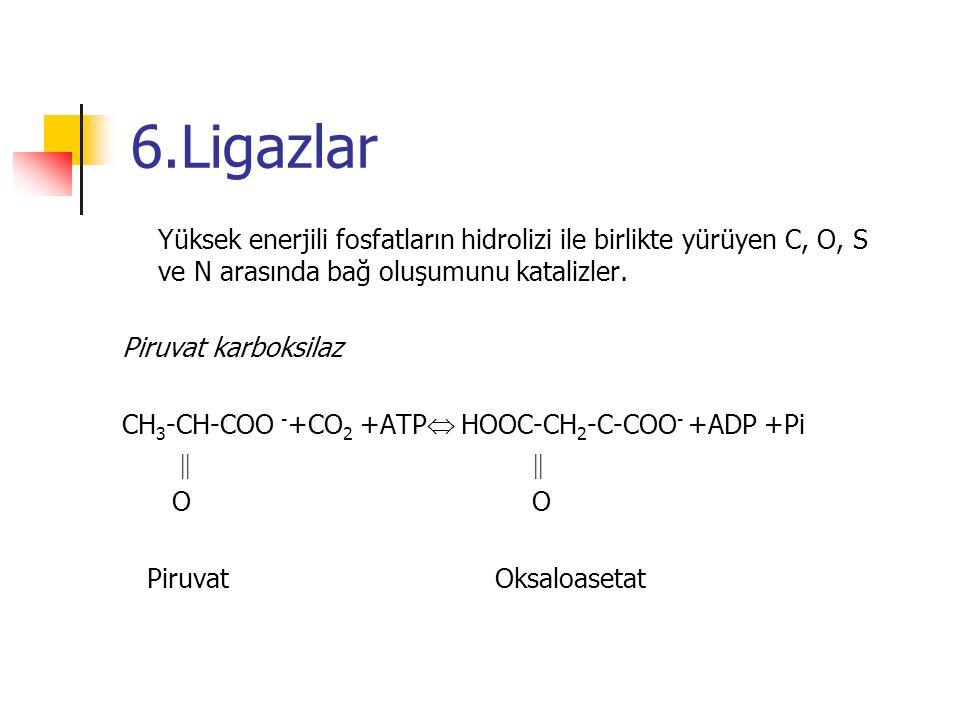 6.Ligazlar Yüksek enerjili fosfatların hidrolizi ile birlikte yürüyen C, O, S ve N arasında bağ oluşumunu katalizler. Piruvat karboksilaz CH 3 -CH-COO