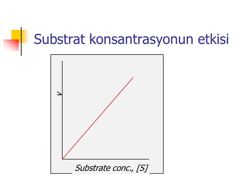v Substrate conc., [S] Substrat konsantrasyonun etkisi