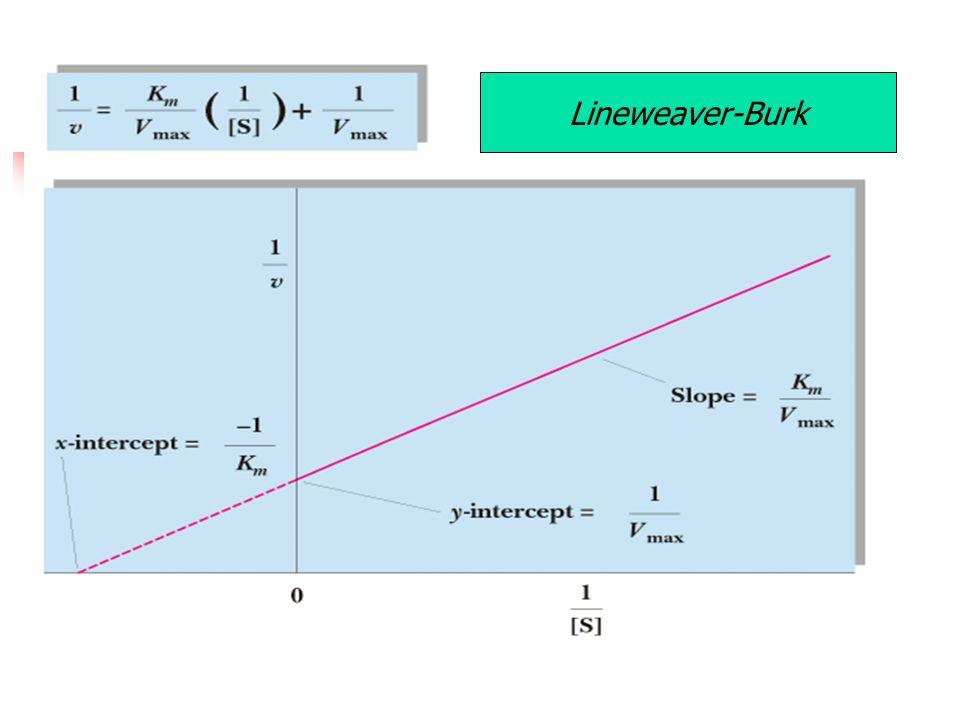 Lineweaver-Burk