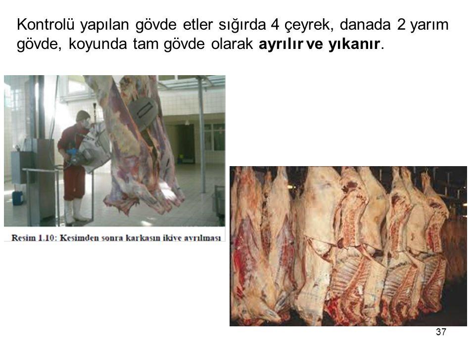 Kontrolü yapılan gövde etler sığırda 4 çeyrek, danada 2 yarım gövde, koyunda tam gövde olarak ayrılır ve yıkanır. 37