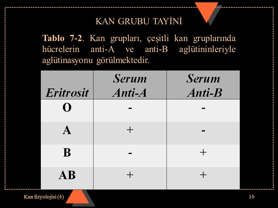 Kan fizyolojisi (4)10 KAN GRUBU TAYİNİ Tablo 7-2. Kan grupları, çeşitli kan gruplarında hücrelerin anti-A ve anti-B aglütininleriyle aglütinasyonu gör