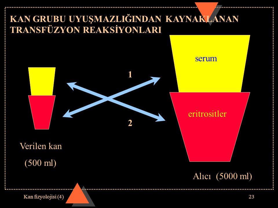 Kan fizyolojisi (4)23 KAN GRUBU UYUŞMAZLIĞINDAN KAYNAKLANAN TRANSFÜZYON REAKSİYONLARI 1 2 Verilen kan (500 ml) Alıcı (5000 ml) serum eritrositler