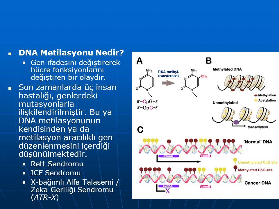 DNA Metilasyonu Nedir.Gen ifadesini değiştirerek hücre fonksiyonlarını değiştiren bir olaydır.