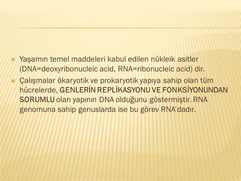  Yaşamın temel maddeleri kabul edilen nükleik asitler (DNA=deoxyribonucleic acid, RNA=ribonucleic acid) dir.  Çalışmalar ökaryotik ve prokaryotik ya