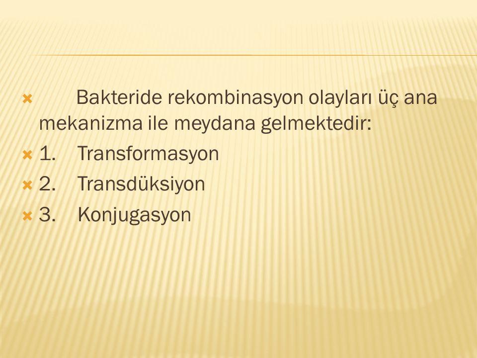  Bakteride rekombinasyon olayları üç ana mekanizma ile meydana gelmektedir:  1. Transformasyon  2. Transdüksiyon  3. Konjugasyon
