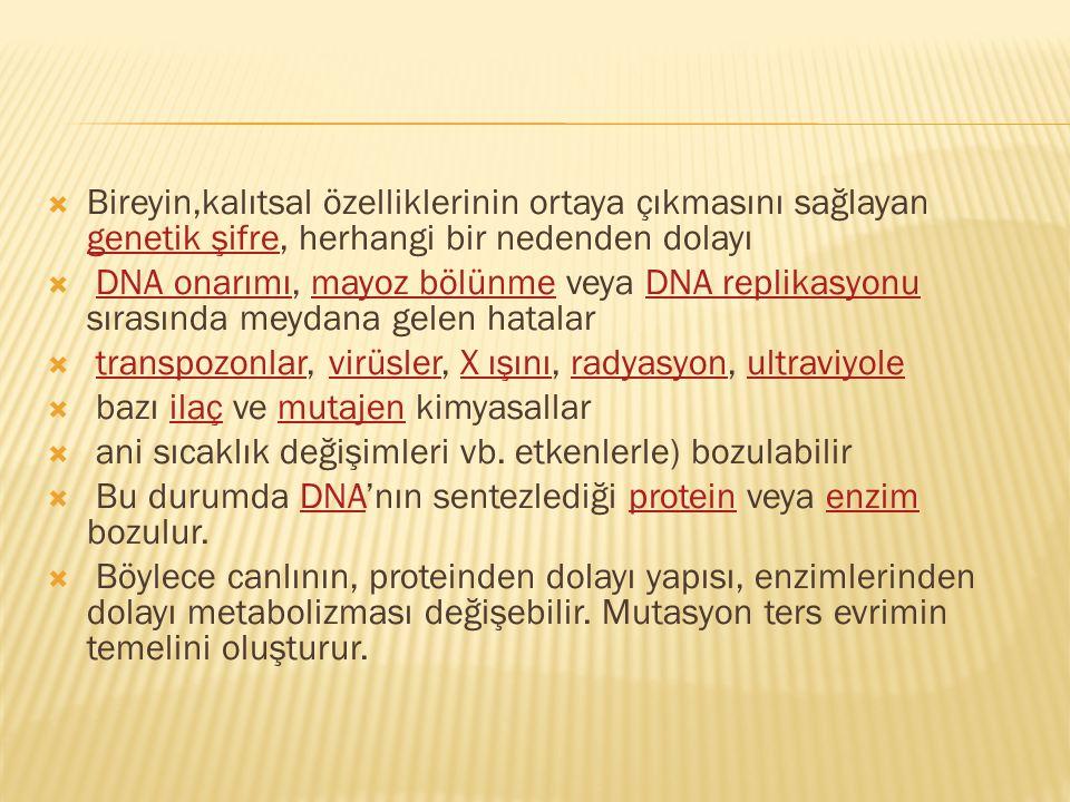  Bireyin,kalıtsal özelliklerinin ortaya çıkmasını sağlayan genetik şifre, herhangi bir nedenden dolayı genetik şifre  DNA onarımı, mayoz bölünme vey