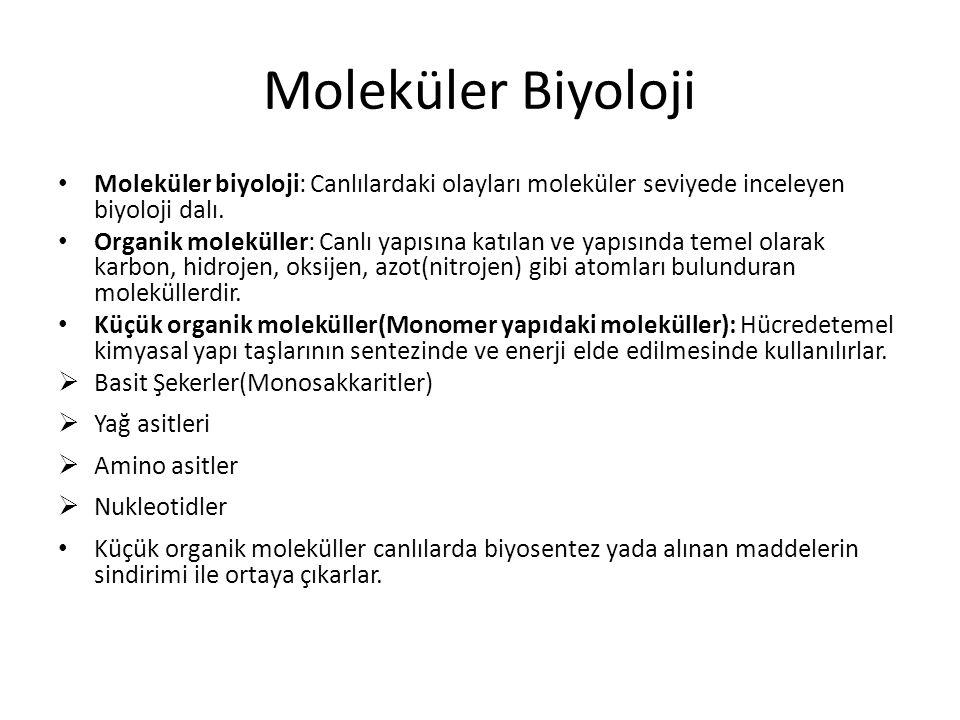 Moleküler Biyoloji Moleküler biyoloji: Canlılardaki olayları moleküler seviyede inceleyen biyoloji dalı. Organik moleküller: Canlı yapısına katılan ve